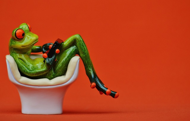 frog-1250496_1920
