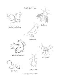 Tiere in der Natur GitA-page-009